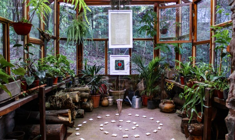 Why living with plants is good for you